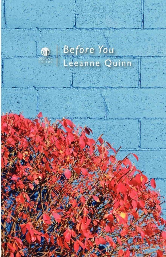Before You. Leeanne Quinn. Dedalus Press, poetry from Ireland and the world
