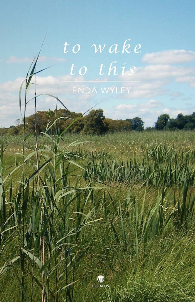 To Wake to This. Enda Wyley. Dedalus Press, poetry from Ireland and the world