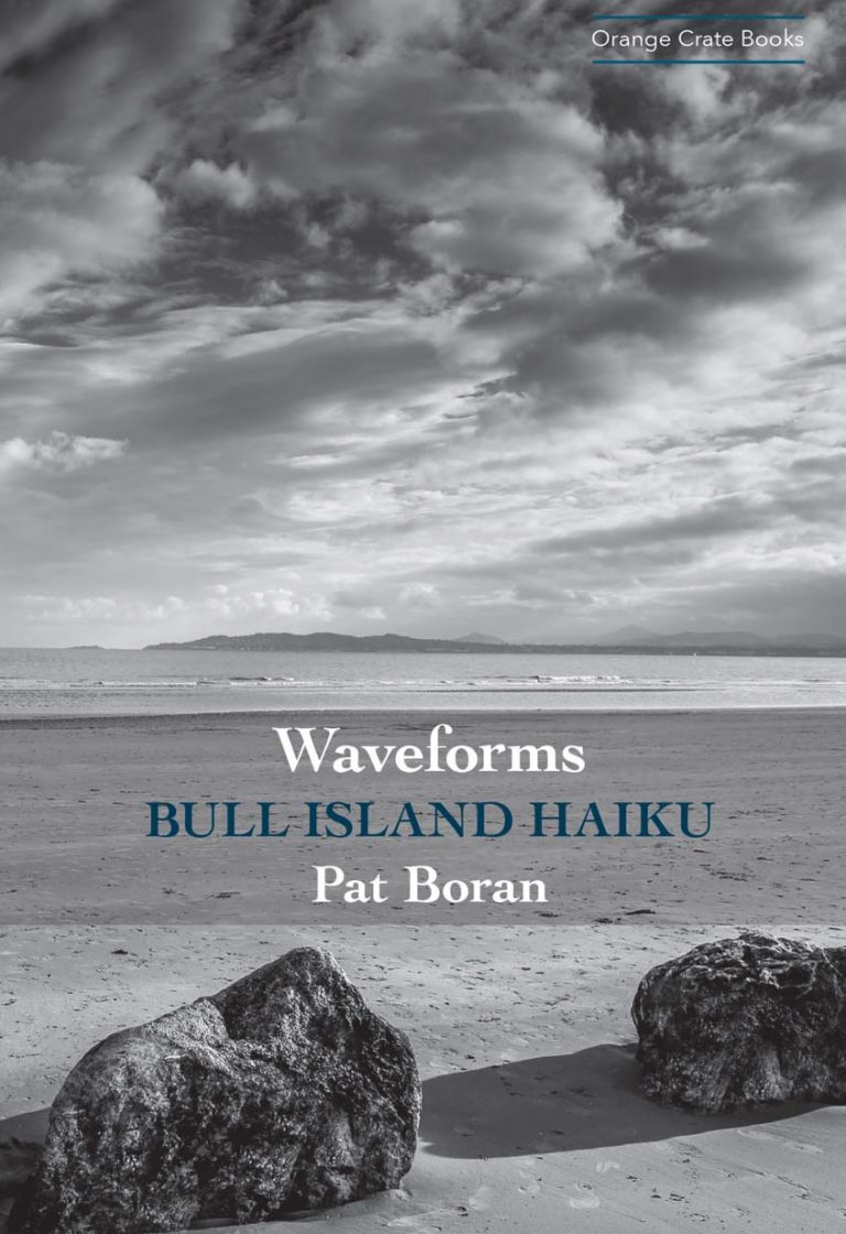 Waveforms by Pat Boran cover. Dedalus Press, poetry from Ireland and the world