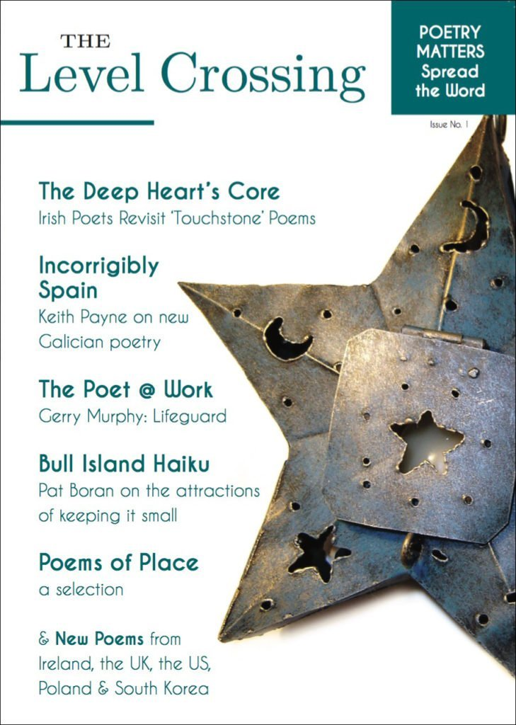 The Level Crossing cover - Dedalus Press, poetry from ireland and the world