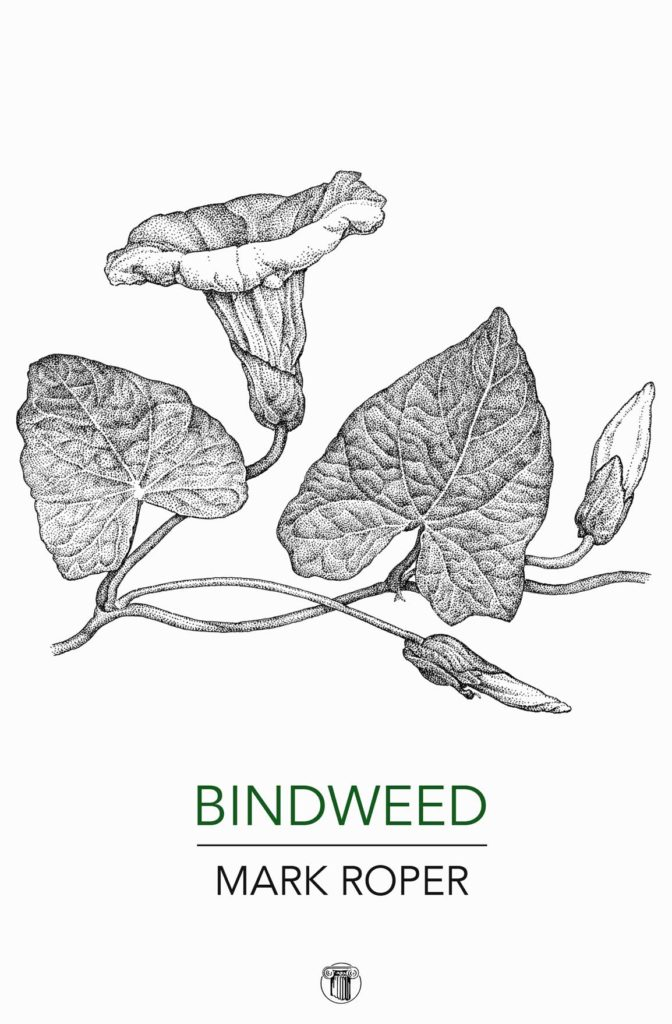 Bindweed cover - Dedalus Press, poetry from Ireland and the world